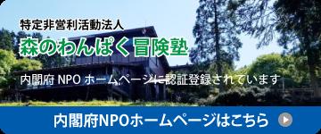内閣府NPOホームページ